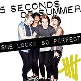 5 Seconds of Summer She Looks So Perfect Sheet Music and Printable PDF Score | SKU 118355