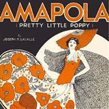 Gary Meisner Amapola (Pretty Little Poppy) Sheet Music and Printable PDF Score | SKU 158005