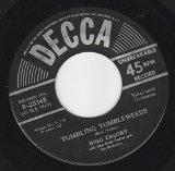 Bing Crosby The Singing Hills Sheet Music and Printable PDF Score | SKU 103539