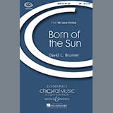 David Brunner Born Of The Sun Sheet Music and Printable PDF Score | SKU 69708