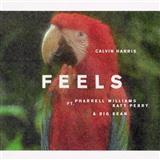Calvin Harris Feels (feat. Pharrell Williams, Katy Perry & Big Sean) Sheet Music and Printable PDF Score | SKU 125389