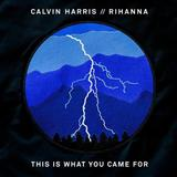 Download or print Calvin Harris featuring Rihanna This Is What You Came For Digital Sheet Music Notes and Chords - Printable PDF Score