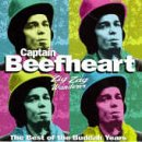 Captain Beefheart image