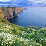 Celtic Folksong Nancy Whisky Sheet Music and Printable PDF Score   SKU 165783