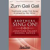 Dan Miner Zum Gali Gali Sheet Music and Printable PDF Score | SKU 410399