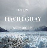 Download or print David Gray Slow Motion Digital Sheet Music Notes and Chords - Printable PDF Score