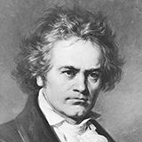 Ludwig van Beethoven Easy (6) Variations On An Original Theme, Woo 77 Sheet Music and Printable PDF Score   SKU 323714