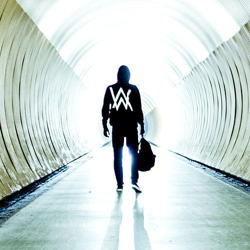 Alan Walker image and pictorial