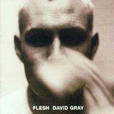 David Gray Falling Free Sheet Music and Printable PDF Score | SKU 33860