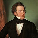 Franz Schubert Rosamunde Overture Sheet Music and Printable PDF Score | SKU 105528