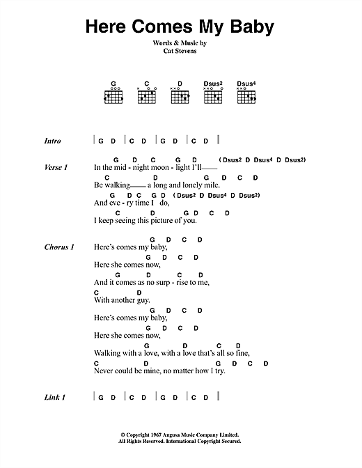 Cat Stevens Here Comes My Baby sheet music notes printable PDF score