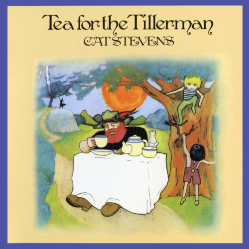 Cat Stevens image and pictorial
