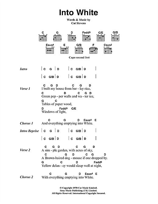 Cat Stevens Into White sheet music notes printable PDF score