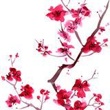 Download or print Japanese Folksong Sakura (Cherry Blossoms) Digital Sheet Music Notes and Chords - Printable PDF Score