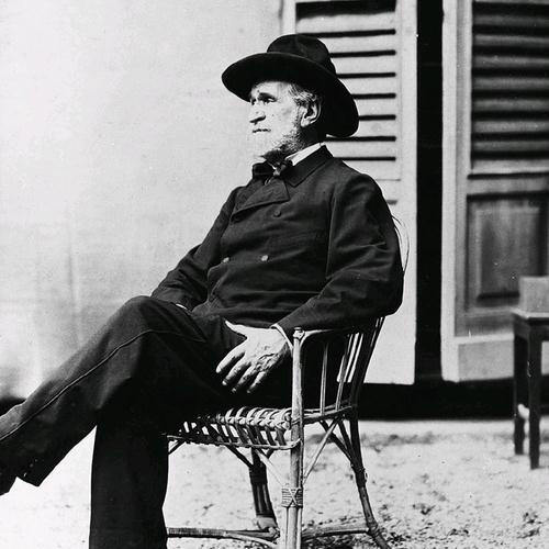 Giuseppe Verdi image and pictorial