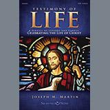 Joseph M. Martin Testimony of Life - Bass Clarinet (sub. Bassoon) Sheet Music and Printable PDF Score | SKU 322015