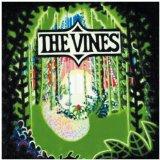 The Vines Mary Jane Sheet Music and Printable PDF Score   SKU 23005
