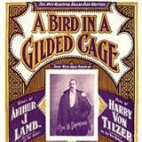 Download Maurice J. Gunsky 'A Bird In A Gilded Cage' Digital Sheet Music Notes & Chords and start playing in minutes