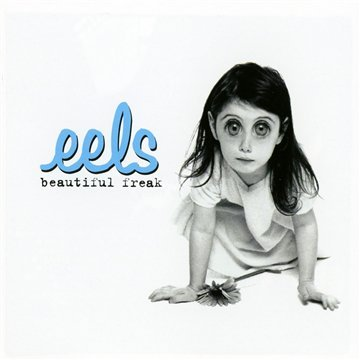 Eels image and pictorial
