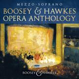 Download Richard Strauss 'Wie Du warst! (from Der Rosenkavalier)' Digital Sheet Music Notes & Chords and start playing in minutes