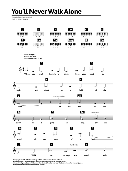 Robson and Jerome You'll Never Walk Alone sheet music notes printable PDF score