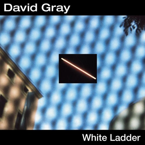 David Gray image and pictorial