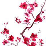 Audrey Snyder Sakura (Cherry Blossoms) Sheet Music and Printable PDF Score | SKU 79267