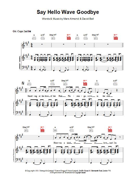 David Gray Say Hello, Wave Goodbye sheet music notes printable PDF score
