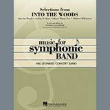 Stephen Bulla Selections from Into the Woods - Bb Tenor Saxophone Sheet Music and Printable PDF Score   SKU 302648
