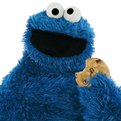 The Cookie Monster image