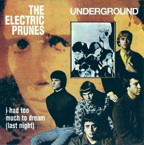 The Electric Prunes image