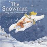 Howard Blake Walking In The Air (theme from The Snowman) Sheet Music and Printable PDF Score | SKU 32380