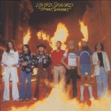 Lynyrd Skynyrd You Got That Right Sheet Music and Printable PDF Score | SKU 56809
